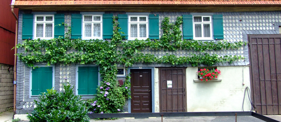 Bild: Pixelio.de/Hartwig
