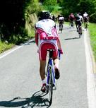 Bild: Moreno Novello/Fotolia.com