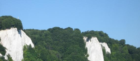 Bild: Botaurus/Wikimedia