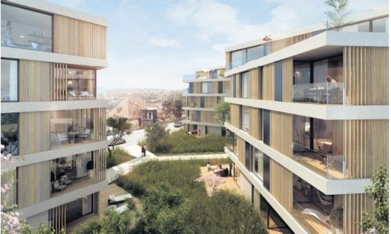 Bild: Molestina Architekten