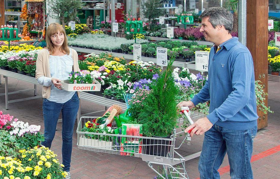 Pflanzen brauchen platz for Pflanzen laden berlin