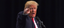 Dossier: US-Präsident Donald Trump - und nun?