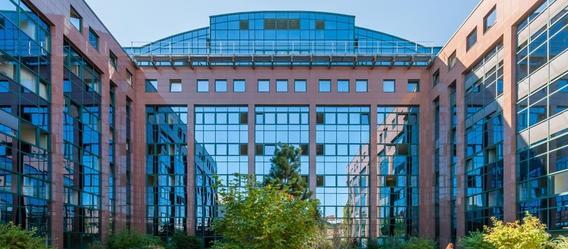 Bild: Paribus Capital GmbH