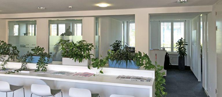 Blick ins Berliner Büro von Hemsö. Die Aufnahme entstand im September 2019, lange vor dem Ausbruch des Coronavirus.