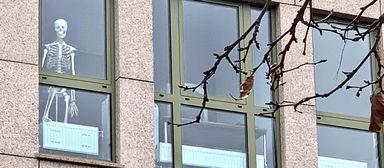 Viele Büros von Immobilienfirmen waren schon vor der Homeoffice- Verordnung so gut wie ausgestorben.