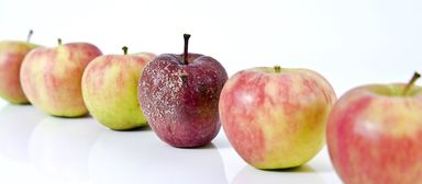 Es wird mehr faule Äpfel geben - die Frage ist nur, wie viele.